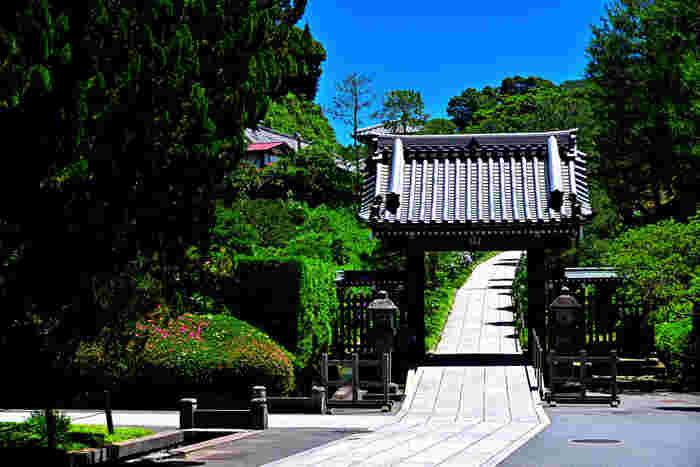人気の観光地・鎌倉エリアにある北鎌倉駅。周辺には、歴史あるお寺がたくさんあり、古い町並みが残っています。休日は観光客でにぎわいますが、平日は人も少なくのどかな雰囲気。憧れの鎌倉界隈で静かに暮らしてみたいという方におすすめの場所です。