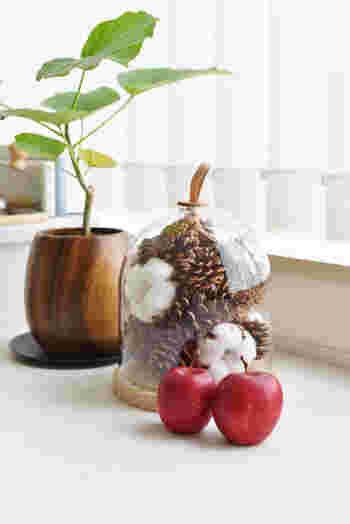 レザーの持ち手が付いたガラスドームに、松ぼっくり・クルミ・綿花を飾った素敵なディスプレイ。真っ白いコットンフラワーと、赤い姫リンゴの組合せがとっても可愛いですね。