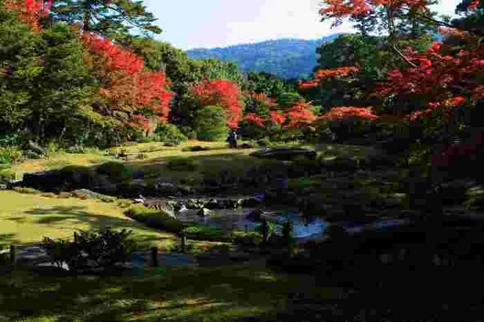 治兵衛は、琵琶湖疏水を園内に引き込み、自然豊かで穏やかな東山の景色を取り入れて、水と緑、建物が調和したし日本庭園の新しいスタイルを築き上げました。  南禅寺界隈だけでなく、平安神宮の神苑や円山公園、京都御苑等など数多くの庭園を手がけていますが、「無鄰菴」は、その中でも、小川治兵衛の代表作の一つして挙げられる名園中の名園です。【11月中旬頃の「無鄰菴」】