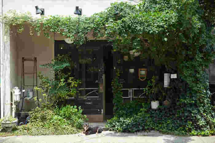自由が丘の駅からは少し離れた、閑静な住宅街にあるTaneru。お店を訪れると看板犬のJIN君が愛想よく出迎えてくれる