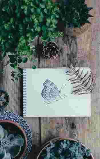 気軽にお散歩スケッチを始めるポイントは、全部を描こうとしないこと。見つけた一輪の野の花や歴史を感じる大木、羽根を休める蝶など、風景全体ではなく描きたい物をピンポイントで描くところから始めてみてください。あわせて、場所や時間、感じたことを一緒に書いておくと、後から見た時に楽しめますよ。