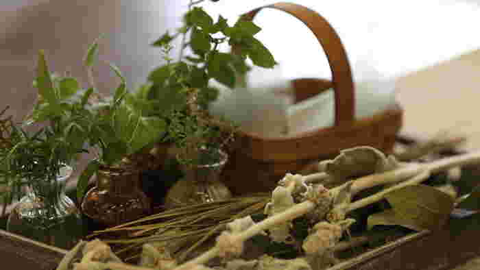フレッシュなハーブに触れると、あまりの香りの良さにびっくりするはず。ベランダやお庭でハーブを育てて、使いたいときにささっと摘み取ることができる環境というのは、実はとても贅沢なものですよね。ハーブを育てるコツやハーブを使ったお料理をご紹介していきましょう。