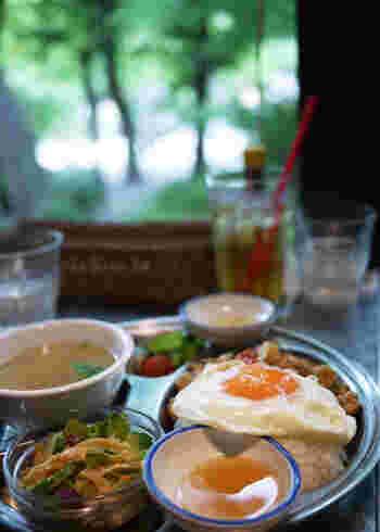 「pepacafe FOREST(ペパカフェ・フォレスト)」は本格的なアジア料理がいただけるのも特徴です。ランチからディナーまでお食事はもちろん、ドリンクやお酒も充実しているので、井の頭公園散策やお散歩の途中にも立ち寄りやすい人気店です。