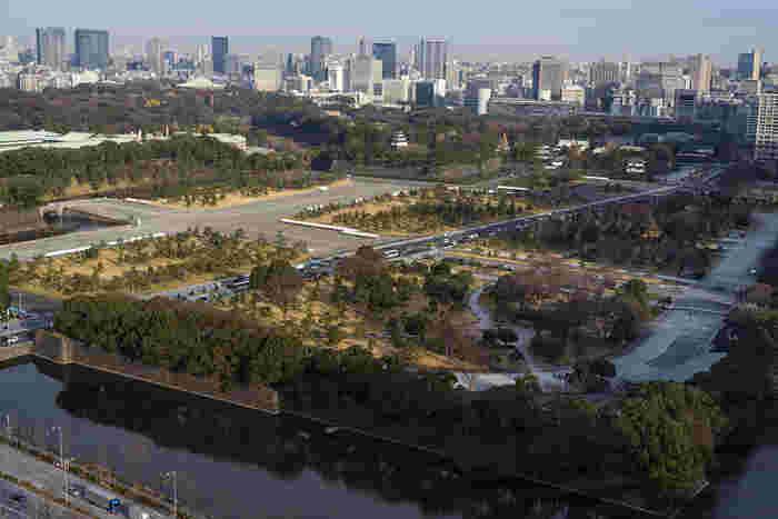 大都会東京のまさに中心地に、想像を絶する広大な自然が広がります。