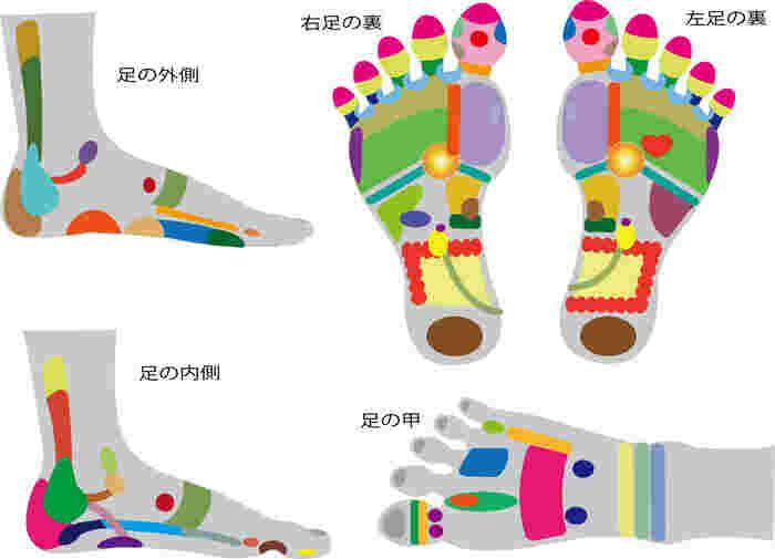 足裏だけでなく、足の側面や足の甲の部分にも反射区があります。