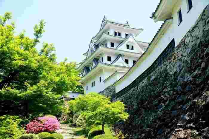 市街地の中心部にある「郡上八幡城」は、城山の頂から城下町を見渡すことが出来る白亜の天守閣。 当時国宝だった大垣城を参考に、昭和8年に再建された木造の天守閣は、木造再建城としては日本最古と言われているそうです。