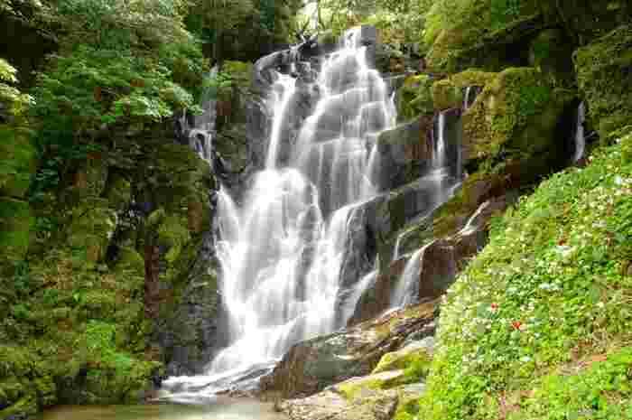 福岡県糸島市の羽金山の中腹にある「白糸の滝」。福岡を代表する滝として知られ、県の名勝にも指定されています。落差約24mで、その名の通り糸のような繊細な美しさが魅力です。