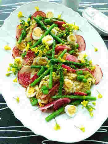 キャベツをはじめ菜の花や渦巻きビーツ、うずらの卵など、春満開の「春キャベツのごちそうサラダ」はたっぷり野菜もとれ、ボリューミーで見栄えも◎。
