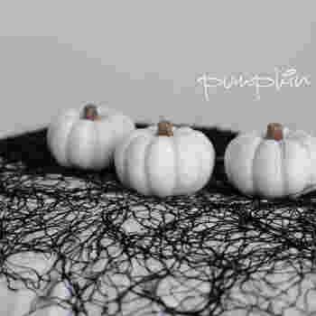 ちいさめのかぼちゃを使うときは、いくつか同じものをリフレインさせると場がまとまります。白をチョイスすると、黒のように重すぎず、オレンジのように華やかすぎず、シックに決まります。