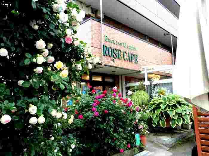 200種類以上のバラや季節の花が咲き誇るカフェ。犬と一緒に入店できるのも愛犬家には嬉しいポイントです。