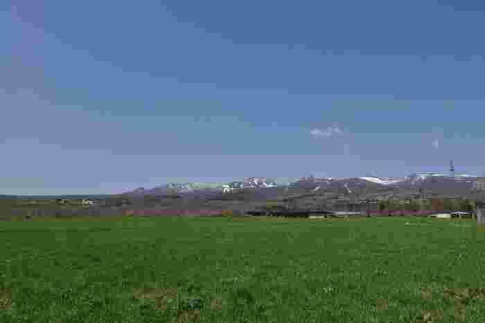 温泉や紅葉、皇族の方々の避暑地としても有名な那須。実は、牛乳やチーズといった酪農が盛んな地域でもあります。