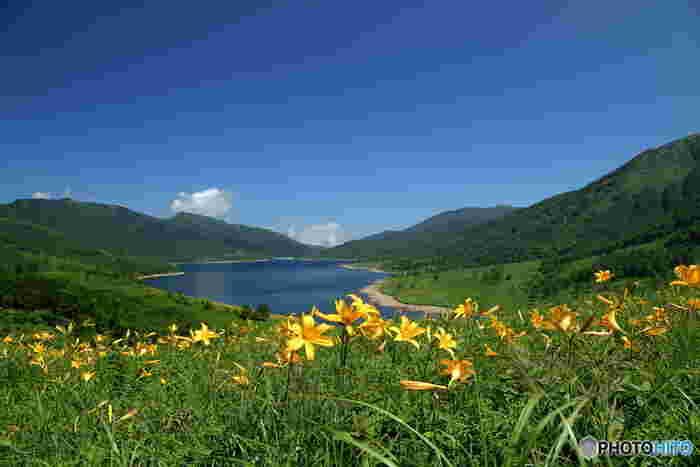 """群馬県と長野県の県境近くにある「野反湖(のぞりこ)」は、標高1500mを超える上信越高原国立公園内にあります。湖の周囲は2000m級の山々に囲まれていて、山の緑と湖面のブルーのコントラストが美しく""""天空の湖""""とも呼ばれているんですよ。"""