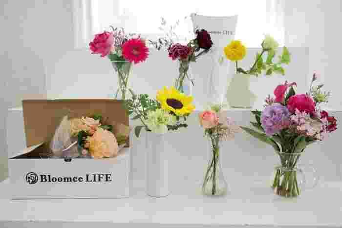 """""""お花の定期便""""を利用した「花暮らし」を楽しむ方が増えています。なかでも充実したサービスで人気なのが、Bloomee LIFEさんです。フローリストが厳選した季節のお花がポストに届き、ライフスタイルに合わせたプランも選べます。いつもお部屋にお花を飾っていたいという方も、なかなかお花を買いに行く機会がないという方も、""""お花の定期便""""ならきっと心が満たされるはず。"""