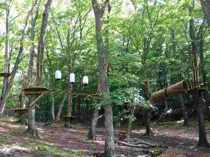 栃木県にある北関東最大級のレジャーパーク「那須ハイランドパーク」のオフィシャルホテル「那須高原TOWAピュアコテージ in NASU HIGHLAND RESORT」。その広大な森を利用して作られたのが「那須の森の空中アスレチック NOZARU(ノザル)」。