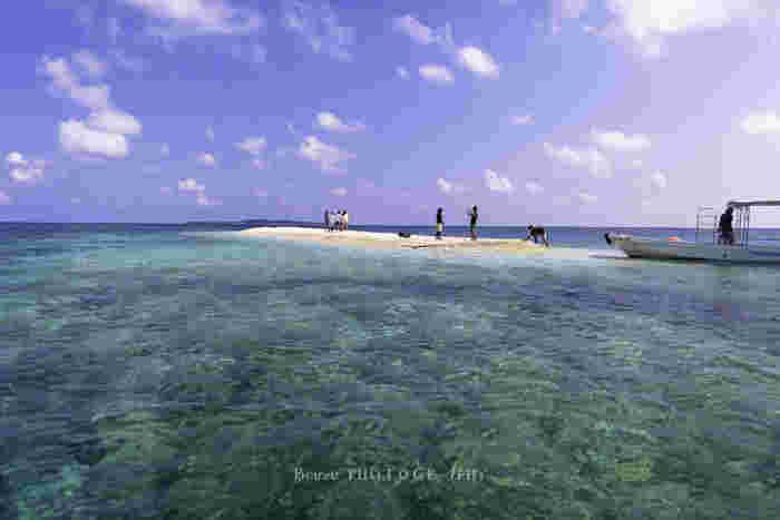 西表島の北部に位置する上原港の沖合には、珊瑚礁でできたぽっかりと浮かぶ小さな無人島、バラス島があります。