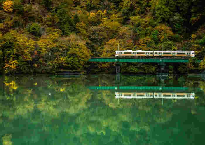 長野県屈指の秘境を走るJR飯田線は、起点となる愛知県豊橋から長野県の辰巳を結ぶローカル線です。全長200kmにも及ぶため、車窓から見える景色は街並みから田園風景へ、そして目の前に広がる山々や渓谷へと変わってきます。  各駅に停車する普通列車のリズミカルな線路の音を聞きながら、のんびり信州の紅葉狩りを楽しんでみましょう。