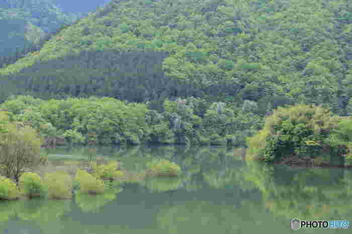 大野ダムによって作られた人造湖(ダム湖)は、虹の湖と異名を持つ美しい湖です。虹の湖、湖を取り囲む美しい山々、豊かな自然のめぐみが織りなす風景の素晴らしさから、大野ダムはダム湖100選に選定されています。