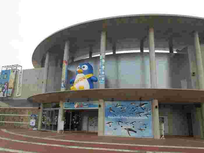 長崎ペンギン水族館は、その名の通り、主にペンギンを展示している水族館です。9種類のペンギンがいるそうなのですが、これは世界で生息するペンギンの半分といわれています。これだけのペンギンを展示する水族館は他になく、世界一とされています。