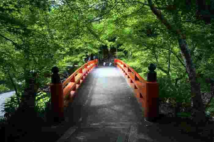 【「槇尾山 西明寺」へと通じる指月橋】