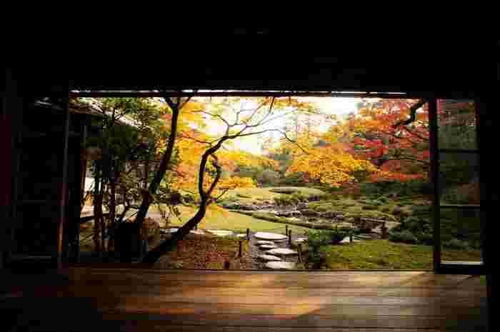 南禅寺の入口にある「無鄰菴」は、明治から大正にかけて活躍した政治家・山縣有朋の旧別荘。南禅寺界隈別荘群の中で常時公開されている貴重な庭園です。現在は京都市が所有し、国の名勝庭園に指定されています。  有明は、自然や庭に対する感性が実に鋭敏で、数寄者としても知られていた人物です。当庭園の設計も監督も自ら行い、当庭園を今に残しました。実際の作庭を任されたのは、七代目・小川治兵衛(おがわじへえ)。無鄰菴だけでなく、南禅寺界隈別荘群の数々の日本庭園を手がけたことで天下にその名を轟かせた、近代を代表する作庭家です。【11月下旬の無鄰菴】