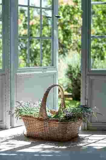 時間に余裕がないときは、部屋の窓を開けて、ぐーんと伸びをして深呼吸するだけでもOK。早起きをするためには、当然夜も早く寝る必要がありますから、続けるうちに自然と生活のリズムが整っていくはずですよ。
