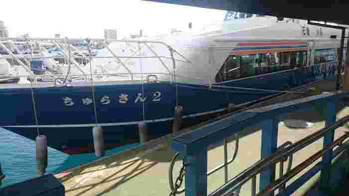 2001年にNHKで放送された朝の連続テレビ小説「ちゅらさん」の舞台となった小浜島へは、ちゅらさんと名のついたフェリーに乗ってむかいます。