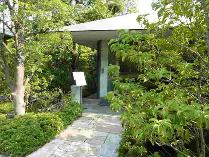 美術館散策や街歩きの合間に、1人で落ち着いて過ごしたい時にぴったりの庭園カフェ。 東京を離れて、まるで森の中にいるような気分にさせてくれます。 ぜひお気に入りの庭園カフェで素敵な時間を過ごしてください。
