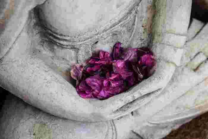 いつだって自分自身を見失わず、すでに自分は満ち足りている存在ということを気づかせてくれる禅。是非日々の生活の中に活かしてみてくださいね♪