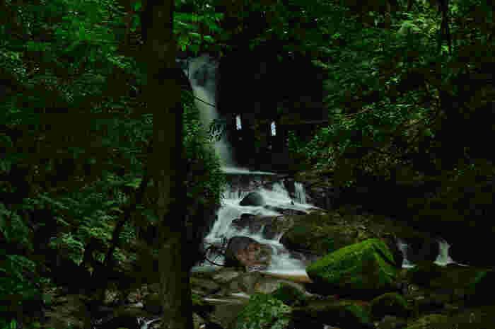月ヶ瀬梅林の近郊には、「竜王の滝」と呼ばれる滝があります。深い緑の森に包まれた滝からは、マイナスイオンをたっぷり浴びることができ、夏でも涼やかな気持ちになることができます。