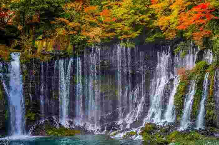 世界遺産であり、日本の滝百選にも選ばれている白糸の滝(しらいとのたき)。幅約200メートル、高さ約20メートルの崖から流れる滝が絹糸を垂らしたように見えることから名づけられました。春は藤、秋には紅葉が滝に彩りを添えます。