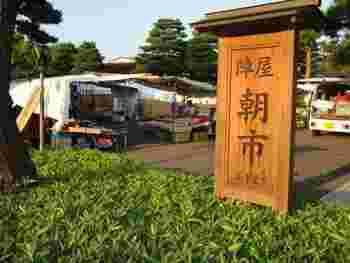 高山陣屋前の広場で毎日行われている陣屋前朝市は、広場の中に大小多くのテントが立ち並んでいます。