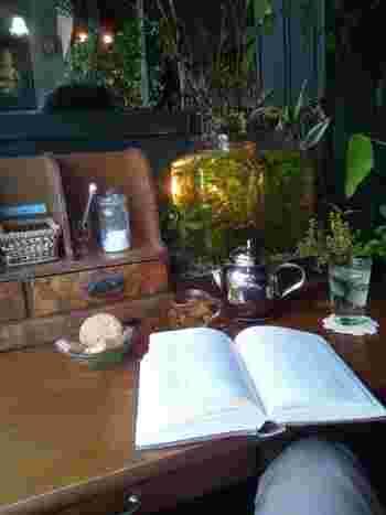 お気に入りの文学書を見つけて読むもよし、水槽を眺めて時を忘れるのもよし。アール座読書館でのレトロな雰囲気に浸りながら、本を片手に心を休めましょう。