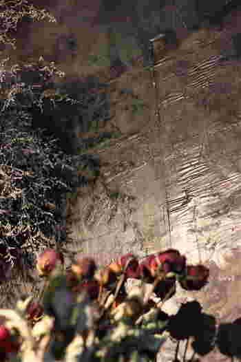 生花やブリザーブドフラワーではなく、ドライフラワーだからこその魅力…感じてみて下さい。