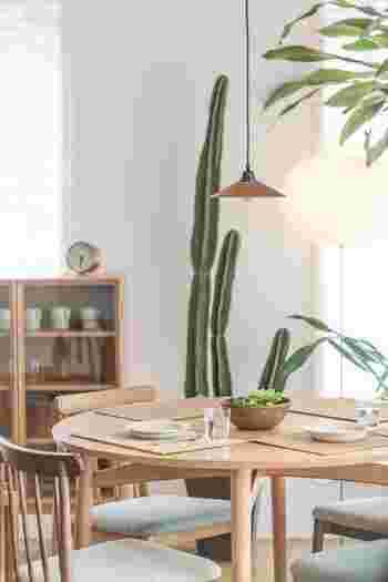 木製のダイニングテーブルや食器棚で統一された空間に、サボテンや観葉植物が優しい雰囲気をプラスしています。