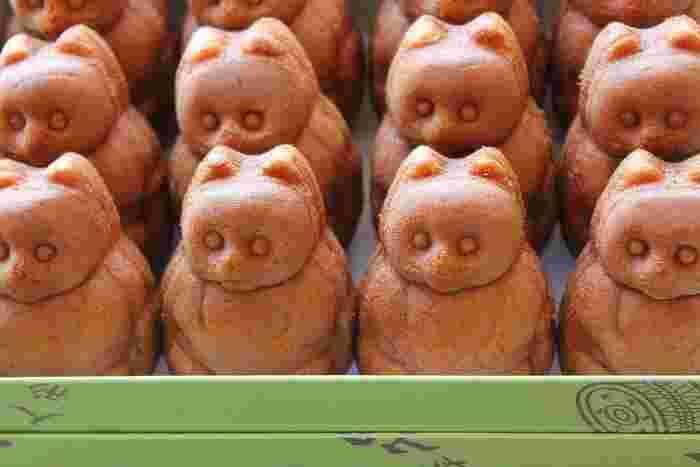 箱を開けるとたぬきがずらり。餡はこし餡で、さっぱりとした甘さが特徴です。お店は錦糸町にあります。