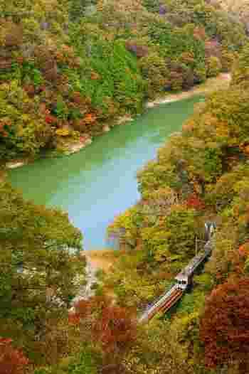 車窓から望む天竜川渓谷は、全国でも有数の紅葉スポット。いくつものトンネルを抜けた先に見えてくる景勝地、天龍峡の紅葉の美しさは、まさに圧巻です!  紅葉の撮影スポットしても人気が高く、美しい瞬間をカメラに収めておきたいですね。