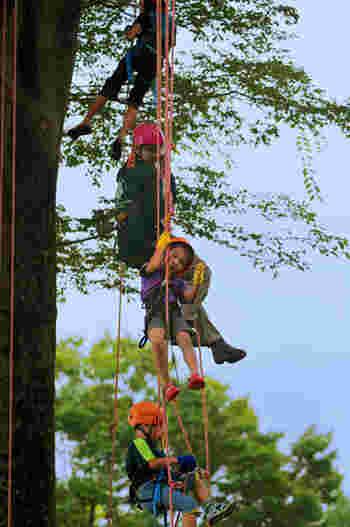 安全を確保するためのハーネスをつけたら、インストラクターからのレクチャーに従い木から垂れ下がるロープを登っていきます。特殊なロープワークを活用しながら、自分の力で頭上の枝に到達するのは、なんとも言えない爽快感!  難しそうに見えますが、小さなお子様からチャレンジできるので、家族でのアクティビティとしてもピッタリ♪