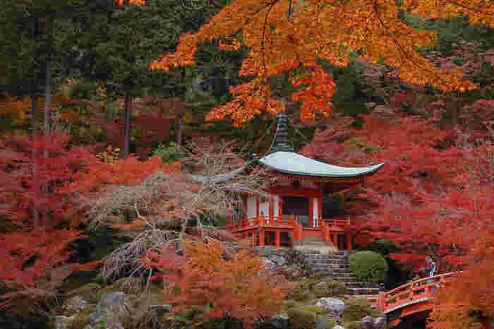世界遺産に登録されている醍醐寺(だいごじ)。林泉と呼ばれる池の周り一帯は、秋になるととても美しい紅葉スポットとなります。