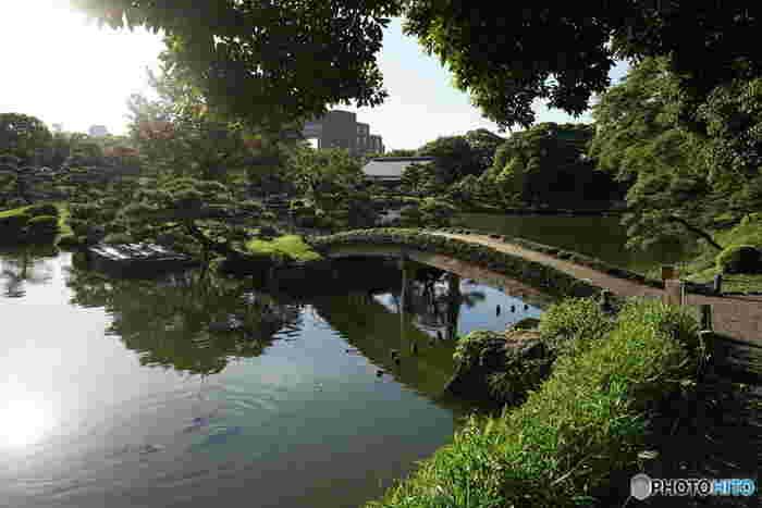 3つの中島を配置した池の周囲には、数寄屋造りの建物、磯渡りの飛び石、樹木が配され、池を中心に回遊すれば、都内の喧騒を忘れて、心地良い静かな一時を過ごせます。庭園内に配された無数の石は、岩崎家が全国の石の産地から収集した名石です。木々と水、名石の織り成す景色を楽しみましょう。