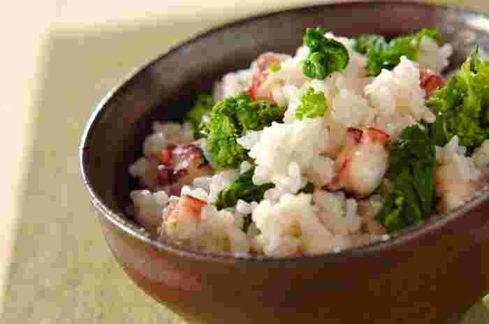 タコの旨味がぎゅっと詰まった炊き込みご飯に、菜の花の緑が鮮やかに映える、なんとも春らしいレシピ。これに具だくさんのお味噌汁があるだけで、十分な春のごちそうに!