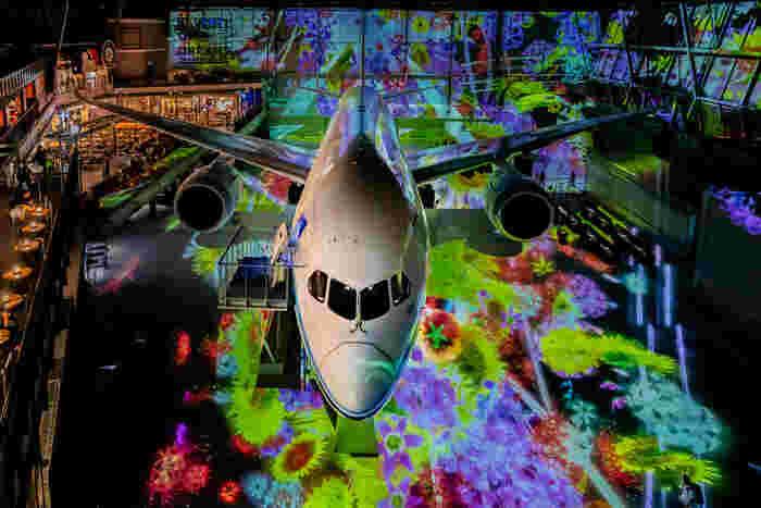 FLIGHT OF DREAMSにはボーイング787型旅客機を正面から臨むことができる展望台があります。七色にライトアップされた背景とボーイング787型旅客機が織りなす瞬間は美しく、思わずカメラに収めたくなる程です。