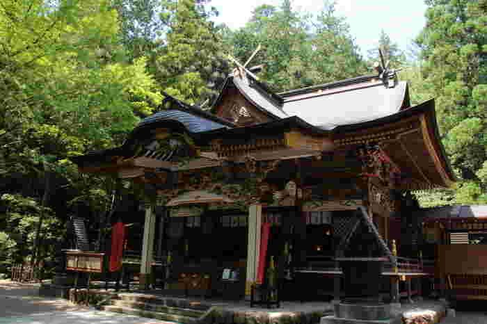 現在の社殿は、江戸時代末から明治初頭にかけて造り替えられた権現造りです。2009年には、御鎮座1900年を奉祝して改修工事が行われ、当時の鮮やかな色合いを彷彿とさせます。