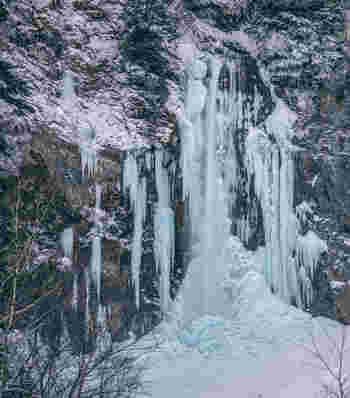 さて、そのように、バスの利便性で人気の「平湯温泉」ですが、温泉宿にとどまらず、「平湯大滝」や「平湯湯民俗館」、冬は「平湯温泉スキー場」がオープンし、さらには雪の中のノルディックウォーク体験など、観光も充実。歴史と自然を存分に楽しめるエリアです。  ※画像は、冬季に楽しめる、「平湯大滝」の氷のアート・氷瀑。
