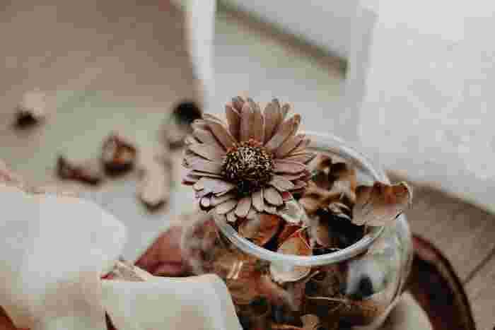 お花はもちろん、葉っぱや木の実をドライにするときにおすすめなのが、グリセリンを使う方法。他の方法と比べて少し手間がかかりますが、お花のボリュームを落とさずに作ることができます。  グリセリン溶液に丸ごと漬ける方法と、吸い上げさせる方法があります。