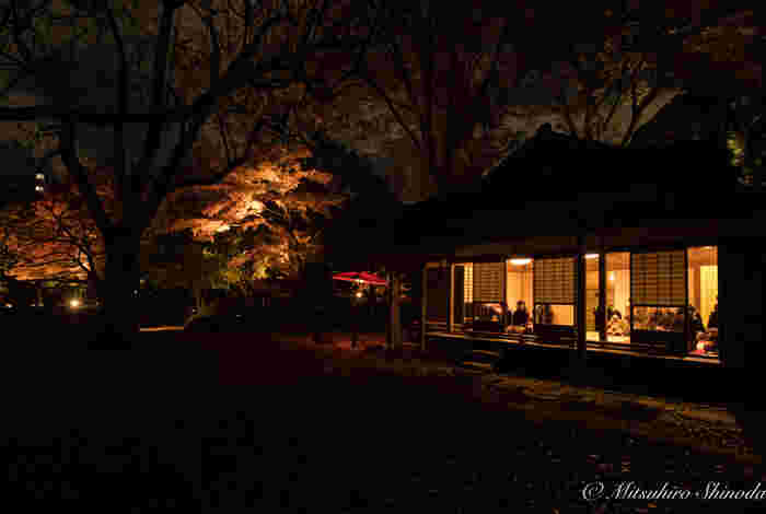 休憩には園内のお茶屋さんもオススメです。ライトアップ期間中には営業時間も延長され、時間を忘れて和の空間を楽しむことができます。