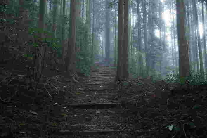 世界遺産「熊野古道」を歩いて那智の滝や熊野那智大社に行くのもおすすめです。 往復で2時間程歩くので、歩きやすい靴や服装でのぞみましょう。