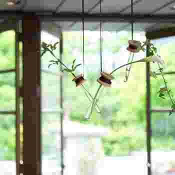 試験管のようなユニークなデザインの一輪挿し。紐は2mと長いので、お好みの長さでハンギングが楽しめます。華奢な草花を飾るのがおすすめ。お部屋にちょっぴり躍動感を演出してみませんか?