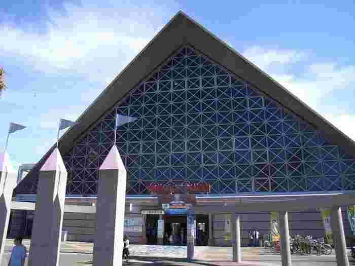 今年で60周年を迎える「須磨海浜水族園」。神戸の人達に長く愛されている水族館です。