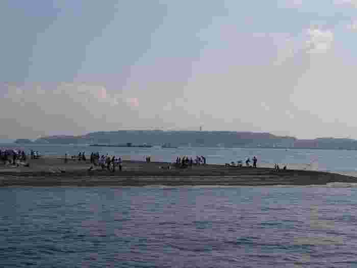 こちらは東京湾に浮かぶ無人島 猿島。