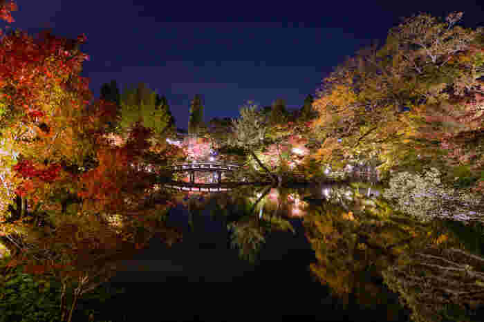 広大な敷地を誇る永観堂では、珠玉の写真スポットが数多くありますが、放生池の美しさは格別です。ライトアップされて闇夜に浮かび上がる色とりどりの樹々を、波一つない静かな放生池の水面が、鏡のように映し出し、この世のものとは思えないほど美しい景色が広がっています。